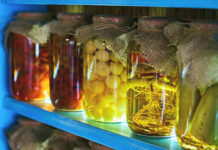 fermentazione, conservazione alimenti